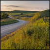 FLINT HILLS ROAD -- Artist: David Mayes Size: 11x14 Medium: Photography Price: $400 ***SOLD***