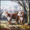 Hereford Pair