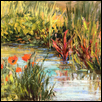 Poppies and Water Plants