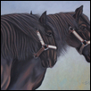 The Percheron Girls
