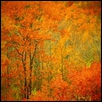 ENCHANTED- NEW ENGLAND -- Artist: Linda Teeter Size: 22 x 28 Price: $325.00
