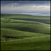 The Grass Really is Greener In the Flint Hills