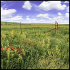 Gate to West Traps Pasture on Tall Grass Prairie NP
