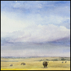 Oklahoma Sky with Cattle