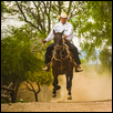 Riding Hard at Hacienda Las Trancas