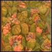 "COULD BE GRAPES -- Artist: tony cartella Size: 13"" x 17"" Price: $750.00"