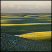 "LATE SPRING IN THE FLINT HILLS -- Artist: Mark Feiden Size: 28"" x 22"" Price: $440.00"