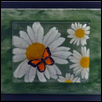 Daisies with 3D Butterfly