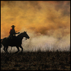 "RIDING THE FIRE LINE -- Artist: Lynda Sprowl Size: 16.5"" x 13.5"" Price: $125.00"