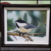 Winter Bird, Black-Capped Chickadee canvas Giclee Prints