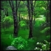 Monochromatic Temperate Forest
