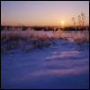 Fresh Snow, Frost, Sunrise, Douglas Co., Kansas
